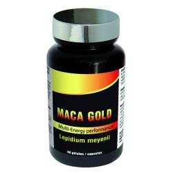 MACA GOLD